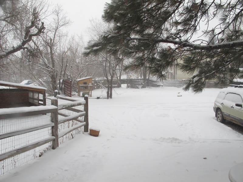 Snow in Durango Colorado Town